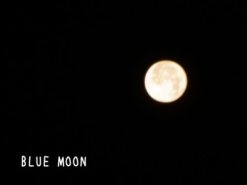 ... View from a Blue Moon'; Premiere Dates Announced | GrindTV.com
